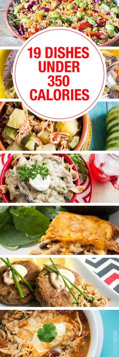 19 Recipes UNDER 350 calories! These deliciously satisfying recipes are for dinner under 350 calories! You don't have to give up on the taste you love to stay on track with your healthy living goals. Try one of these delicious dinner ideas under 350 calor Low Calorie Dinners, Fast Dinners, No Calorie Foods, Low Calorie Recipes, Diet Recipes, Cooking Recipes, Fish Recipes Under 300 Calories, 500 Calories Or Less Meals, 500 Calorie Diets