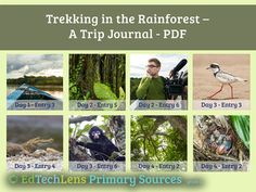 Use primary sources in Science class! This unit, aimed at grade takes several weeks to complete and is filled with fascinating info and outstanding photos. Trip Journal, Rainforest Theme, Virtual Field Trips, Primary Sources, Life Science, Trekking, Opportunity, Students, Presents