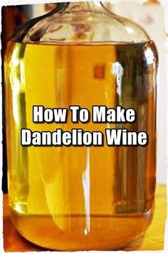 How To Make Dandelion Wine - Dandelion wine is probably the best tasting wine you can make at home! Dandelions will be everywhere pretty soon. See how to make a batch and take advantage of the first batch of dandelions. #Bushcraft