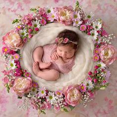 Inspiration For New Born Baby Photography : My Only Sunshine Photography Newborn Photography Adelaide SA
