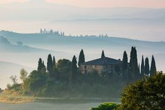Tuscany photography tour Lucca, Beautiful Landscapes, Beautiful Gardens, Photography Tours, Green Landscape, Tuscany Italy, Cool Places To Visit, The Good Place, Cool Photos