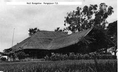 Courtesy: Larry Brown.Denis Sharp lived there in the 1960's.  Rungajaun Tea Estate is in the Sibsagar District and is an Octavius Steel garden.