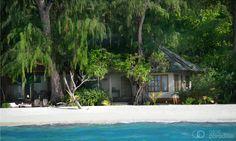 Denis Private Island - Seychelles Luxury Resort   Atoll Paradise