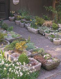 Make a hypertufa container that's perfect for rock gardening, alpine plants, or a birdbath.