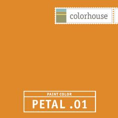 Colorhouse PETAL .01: Make no mistake, PETAL .01 is loud and vibrant. An orange designed to be used sparingly, unless you want to live loud. Try PETAL .01 with CLAY .06 and PETAL .04 for an unexpected visual surprise. Have fun.
