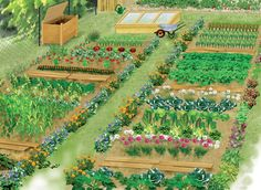 Create the plan of his vegetable patch Plan Potager, Potager Bio, Potager Garden, Vertical Vegetable Gardens, Vegetable Garden Design, English Country Decor, French Country, Plant Cuttings, Garden Planning