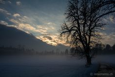 Foggy winter day in Jona, Rapperswil Winter Day, Mother Nature, Winter Wonderland, Switzerland, Snow, River, Celestial, Sunset, Outdoor