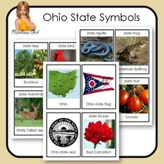 Ohio State Symbols Cards - 12 cards in this set