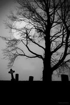 Cemetery by Tammy LeMasters Gross Cemetery Headstones, Old Cemeteries, Cemetery Art, Graveyards, Spooky Places, Dark Photography, Wow Art, Dark Places, Jolie Photo