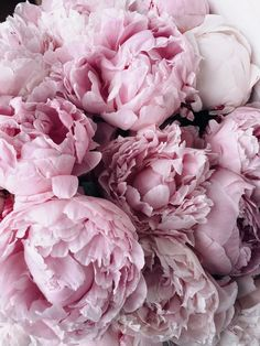 𝔭𝔢𝔬𝔫𝔶 𝔬𝔟𝔰𝔢𝔰𝔰𝔦𝔬𝔫 is real🌸 peonies love flowers mood inspo bouquet obsessed pink vibes