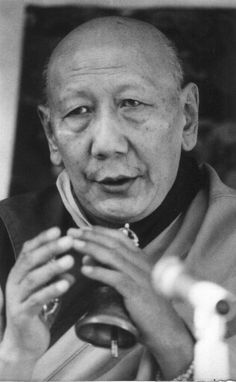 Use the Dharma that you have studied to change your mind, to be different from before. That is the purpose of Dharma, and if you can use it to change your mind in this way you won't be poor in Dharma.   -- Ling Rinpoche