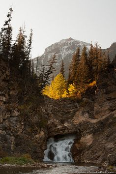 Running Eagle Falls, also called Trick Falls, Glacier National Park, Montana; photo by Julie Lubick*