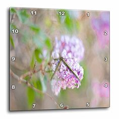 Jos Fauxtographee Realistic - A Bush In Focus With The Background in Lilac and Green Out of Focus with Leaves and Flower Buds - 15x15 Wall Clock (dpp_51949_3) 3dRose http://www.amazon.com/dp/B00BDR2B6A/ref=cm_sw_r_pi_dp_Z2OXwb1K4N5JH