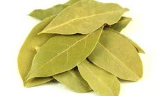 Bay Leaf Health Benefits to Treat Gout and Lower Cholesterol Burning Bay Leaves, Savory Spice Shop, Gm Diet, Laurel Leaves, Delicious Restaurant, Lower Cholesterol, Shangri La, Health Benefits, Seashell Crafts