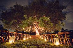 Lanternlight – Romantic Wedding Lighting Ideas Lanterns lining the aisle for an evening ceremony Wedding Ceremony Ideas, Vow Renewal Ceremony, Outdoor Ceremony, Wedding Vows, Dream Wedding, Renewal Wedding, Garden Wedding, Outdoor Night Wedding, Wedding Mandap