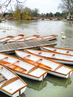 These rowing boats at Stratford upon Avon have beeen given either the names of various Shakespeare plays or characters appearing in them. The River Avon is a very popular leisure facility at Stratford. Countryside Village, Stratford Upon Avon, Country Life, Great Britain, Perfect Place, United Kingdom, Beautiful Places, Places To Visit, England