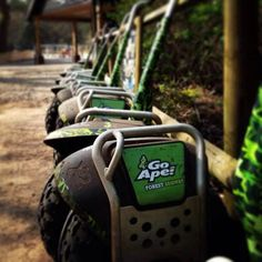 Our all-terrain, self balancing Forest Segways. We currently have 9 locations in the UK - more to be unleashed soon! Snapped by our very own Mr Segway (@norfolkdave) of Thetford Forest, Suffolk