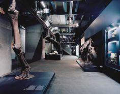 Ruhr Museum auf Zollverein | Ruhr Museum, Essen