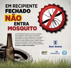 campanha contra dengue 2012 - Pesquisa Google Dengue, Campaign