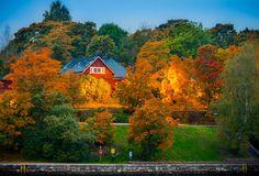 Autumn IX by Rosen Velinov on Cabin, Autumn, House Styles, Nature, Home Decor, Naturaleza, Decoration Home, Fall Season, Room Decor