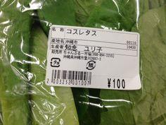 Romain Lettuce Japanese Label