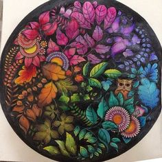 Mandala Owls Enchanted Forest. Mandala de Corujas Floresta Encantada. Johanna Basford: