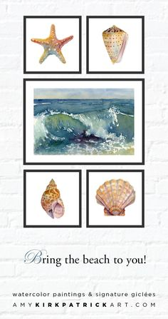 Watercolor paintings and signed prints by Amy Kirkpatrick • AmyKirkpatrickArt... #beach #gallerywall