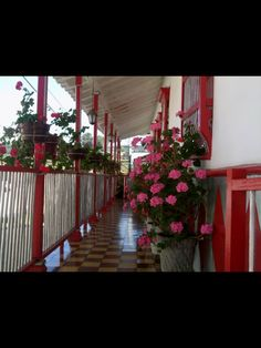 Antioquia, Colombia Beautiful Places To Visit, Stairs, Country, Bella, Pink, Home Decor, Countries, Earth, Stairway