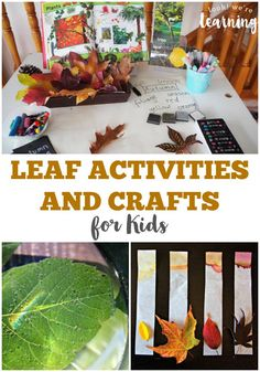 cool Top Summer Projects for Friday #crafts #DIY Check more at https://boxroundup.com/2016/09/03/top-summer-projects-friday-crafts-diy-4/