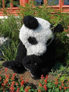 Panda Topiary - China | Flickr - Photo Sharing!