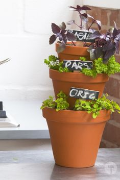 Having herbs readily available at home is so convenient. Save some space in your kitchen by planting your favourite herbs in this vertical format. Facebook Sign Up, Planting, Your Favorite, Planter Pots, Herbs, Space, Kitchen, Diy, Display