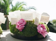 escort cards on moss w/ pink peonies