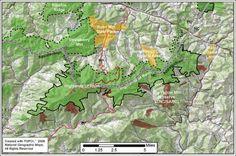 The Highlands of Roan in North Carolina :   UnakaMtns Roan