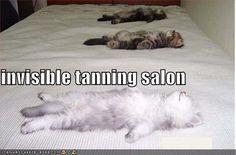 Invisible tanning salon.