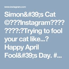 Simon's Cat ©さんはInstagramを利用しています:「Trying to fool your cat like... Happy April Fool's Day. #simonscat #catsofinstagram #animation #aprilfools #catowners #catlovers」