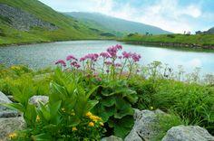 Montañas Carpathians | Insolit viajes