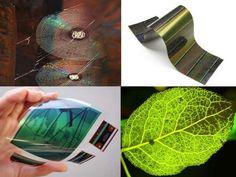 Les feuilles végétales présentent une structure en nervures qui peut inspirer des électrodes à destination de cellules solaires, de sources de lumière et de chauffages transparents.   Les toiles d'araignée sont bien connues pour leur capacité à piéger des insectes. Les chercheurs se sont donc inspirés de ces dernières pour un dispositif optoélectronique