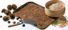 Fan delle Castagne? Mai assaggiato il Castagnaccio ?Uva sultanina, pinoli, olio, sale, 1 rametto di rosmarino e farina di castagna di Cuneo #IGP!  Buon appetito!