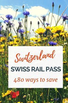 If you are you thinking your budget can't afford travel in Switzerland, think again! Get ready for 480 ways to save (and 3 travel tips) while you travel in Switzerland. Lets make travel in Switzerland a reality. European Vacation, European Destination, European Travel, European Trips, Switzerland Vacation, Visit Switzerland, Switzerland Itinerary, Europe Travel Tips, Places To Travel
