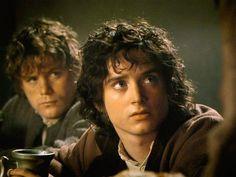 Frodo and Sam.
