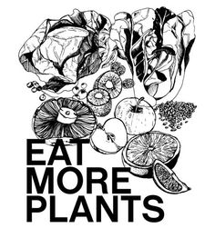 Meat is good, but a lot of us don't get our fruits and veggies that we should!