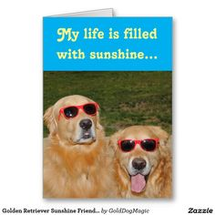 Golden Retriever Sunshine Friendship Greeting Card