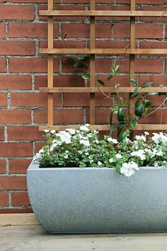 Use a trellis inside the trough to add height with climbing vines. YES!