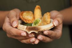 Ghugra | Savoury Indian hand pies filled with green peas and coconut | ©tongueticklers.com