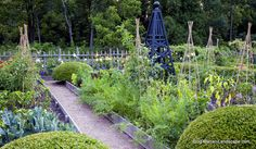 Mariani Landscape Edible Garden, more edible gardens on our own properties.  Read more In the Garden with Mariani
