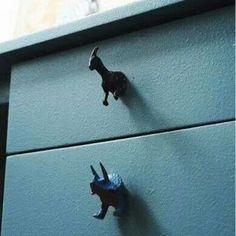 Dino knobs