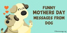 Cute Funny Dog Mothers Day Wishes, Funny Mothers Day Messages from Dog. Inspiring Mother's Day messages in English for Dogs and Puppies, Doggies Mother's Day Card Messages, Happy Mothers Day Messages, Dog Mothers Day, Mother Day Message, Mother Day Wishes, Funny Messages, Happy Mother's Day Funny, Doggies, Dogs And Puppies