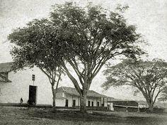 Parque del Poblado en 1900 aprox My Ancestry, Outdoor, Lakes, Medellin Colombia, Jungles, Old Photography, Beautiful Landscapes, Antique Photos, Waterfalls