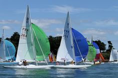 Dragons racing in the Golfe du Morbihan, Brittany Dragon Classes, Brittany, Opera House, Dragons, Sailing, France, Dolphins, Canvases, Ships