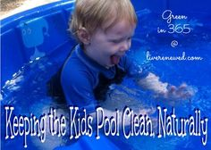 Do your kids love to splash in a kiddie pool all summer long? Then you know how quickly it can get gross! Check out these tips and tricks for naturally keeping the kid's pool clean!